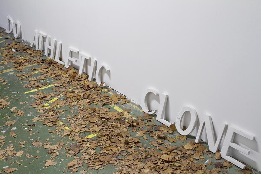 http://celinevache-olivieri.com/files/gimgs/98_tcd2.jpg